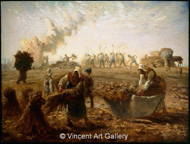 A3445, MILLET, Buckwheat Harvest, Summer