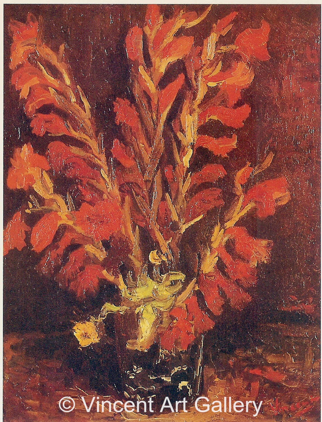 JH1146, Vase with Red Gladioli
