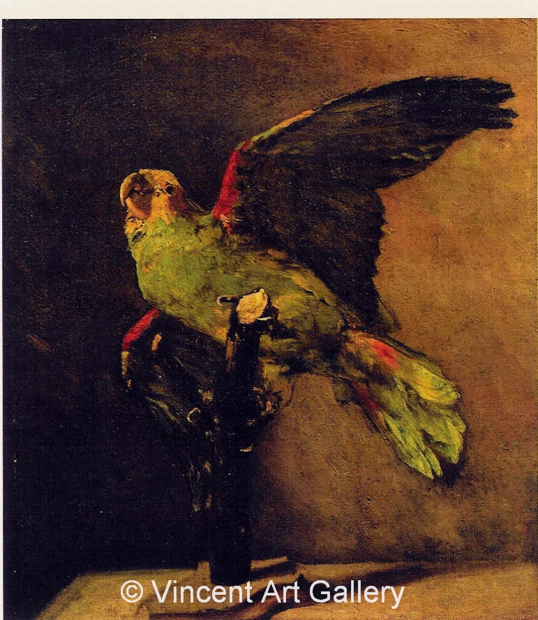 JH1193, The Green Parrot