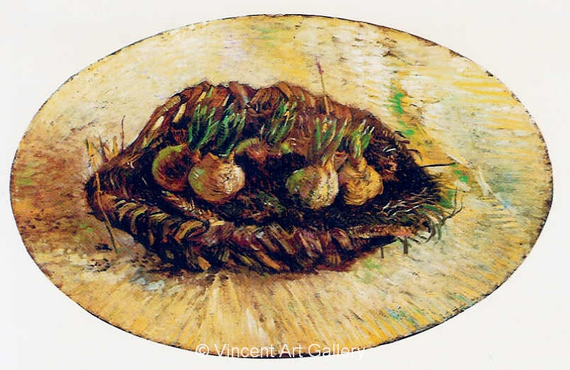 JH1227, Basket of Sprouting Bulbs