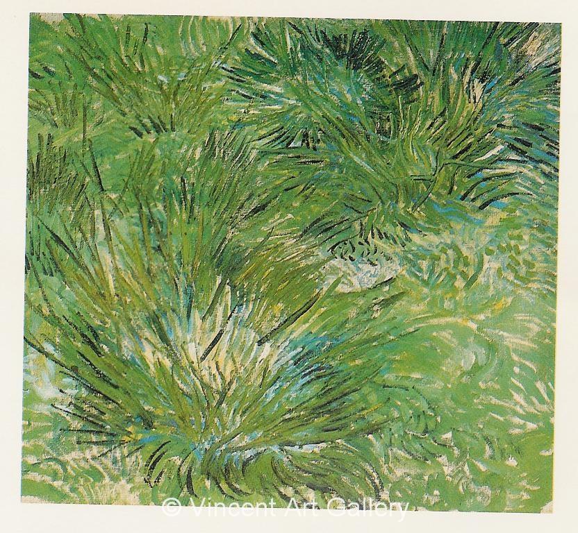 JH1678, Clumps of Grass