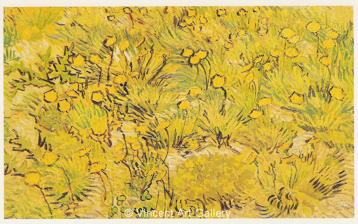 A Field Of Yellow Flowers By Vincent Van Gogh Oil Painting