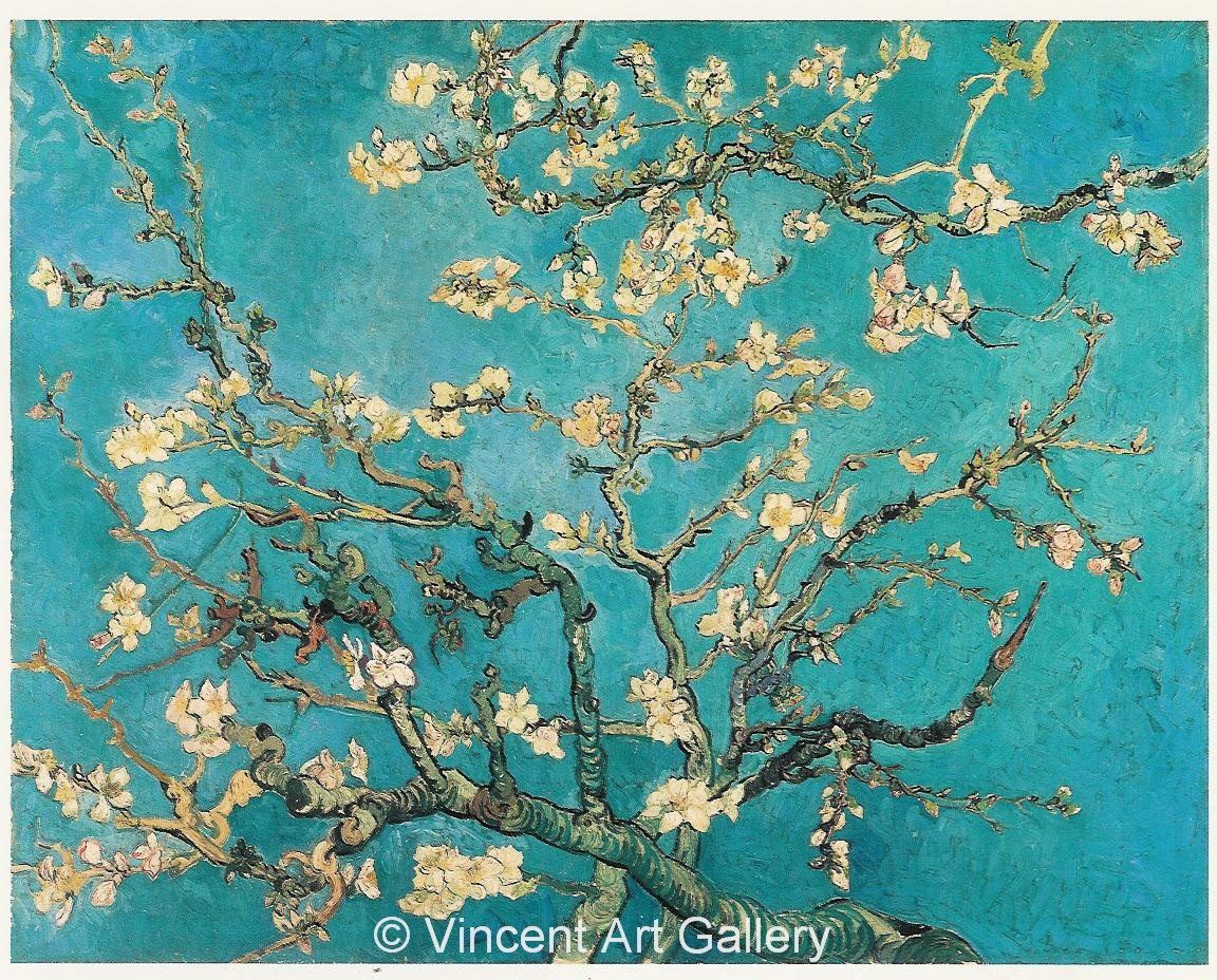 JH1891, Blossoming Almond Tree 001