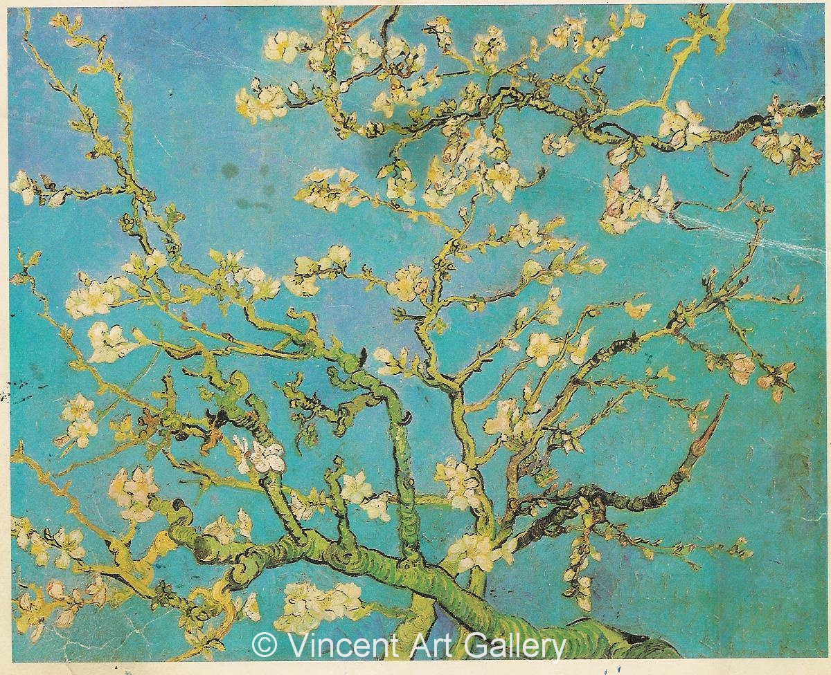 JH1891, Blossoming Almond Tree